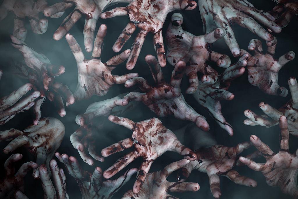 Filmy o epidemii często są wizją postapokaliptycznego świata pełnego zombie. Zdjęcie ilustracyjne, FOTOKITA/shutterstock.com