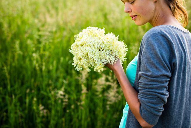 Kwiaty czarnego bzu też mają właściwości lecznicze