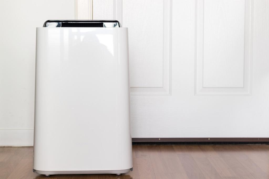 Oczyszczacz powietrza o stylowej formie może być również świetnym dodatkiem dekoracyjnym.