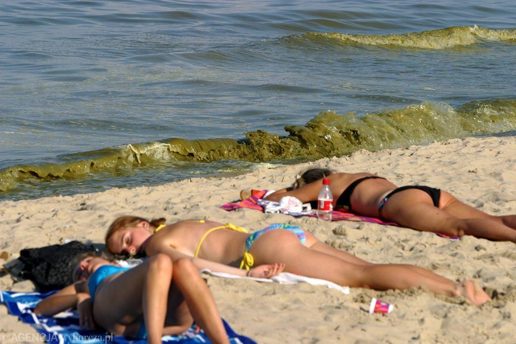 Sinice w Bałtyku. Kiedy się pojawią? Które kąpieliska mogą zostać zamknięte?