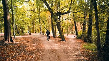 Wczoraj (23 września) rozpoczęła się kalendarzowa jesień. Pogoda w tym roku nas dotąd rozpieszczała, jesienne zmiany przychodzą powoli. Warto je śledzić w tak pięknych miejscach jak park nad Kanałem Bydgoskim. O tej porze roku jest tu najładniej.