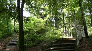 Park Miejski w Tarnowskich Górach