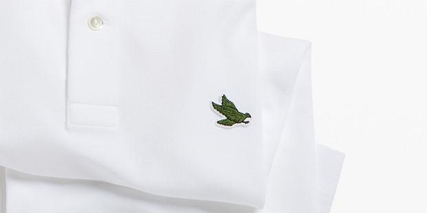 Słynny zielony krokodyl znika z koszulek polo Lacoste - w szczytnym celu