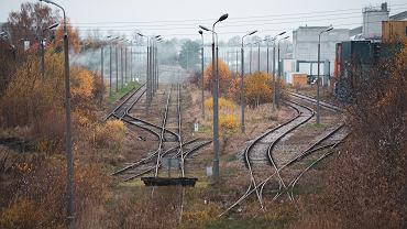 Tory kolejowe (zdjęcie ilustracyjne)