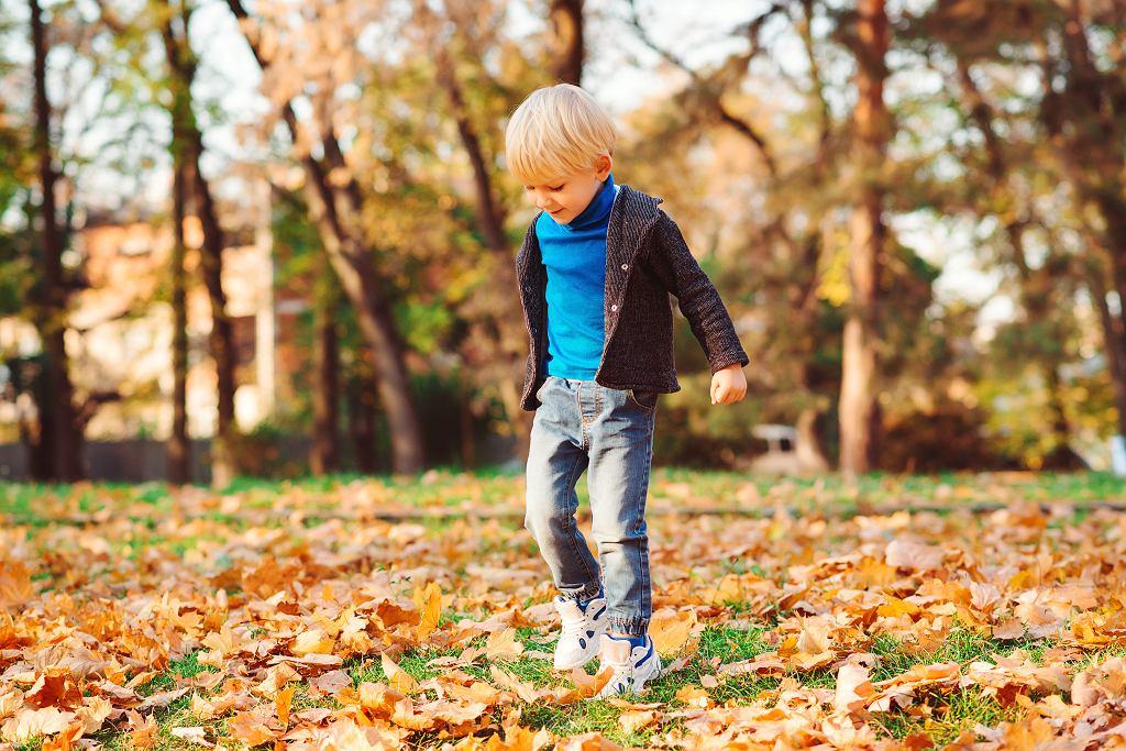 Powrót do przedszkola, w co warto się zaopatrzyć na jesienną pluchę?