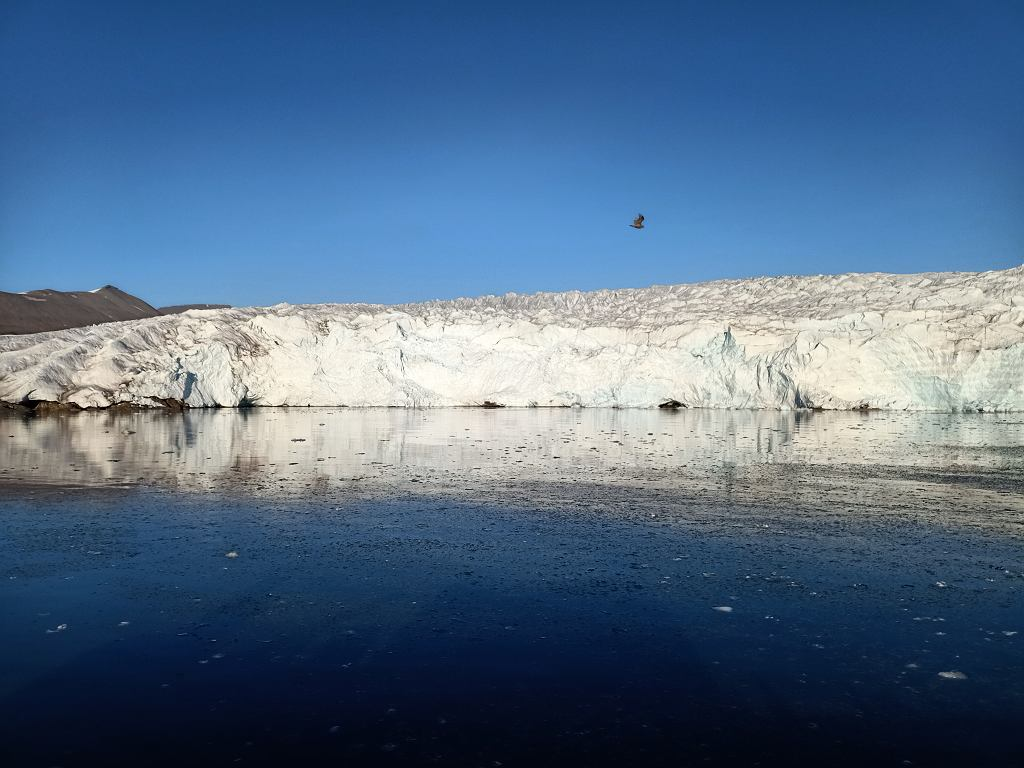 Spitsbergen, archipelag Svalbard, lodowiec Nordenskjolda, jeden z największych na wyspie.