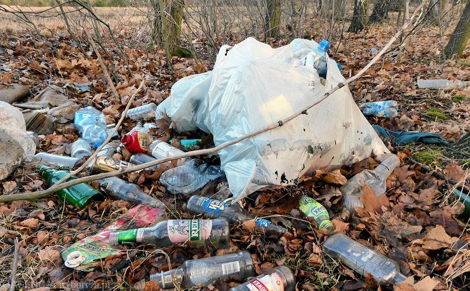 Zostawił śmieci w lesie