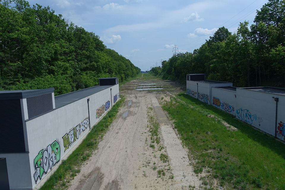 Spacer po terenie 'zielonego expo'. Wąwóz po dawnych torach kolejowych, w którym mają znaleźć się najważniejsze pawilony wystawowe.