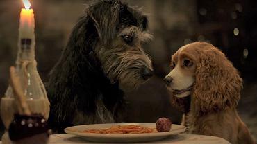 kadr z filmu 'Zakochany kundel'