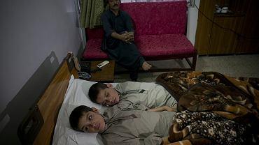 Pakistańscy bracia są aktywni tylko za dnia.