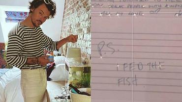 """Harry Styles pojawił się w domu fanki, kiedy jej nie było! """"Nakarmiłem rybki"""""""