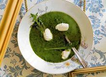Zupa z rukoli i koziego sera - ugotuj