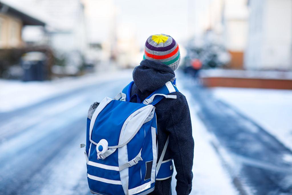 Dlaczego warto, by dziecko zimę w mieście spędziło właśnie w ten sposób, na półkoloniach w czasie ferii zimowych 2020?