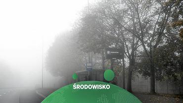 smogo, zdj. ilustracyjne