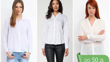 Białe koszule do pracy - do 50 zł