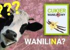 Zamiast cukru waniliowego jemy WANILINOWY - zrobiony z odchodów bydła? Czy to zdrowe?