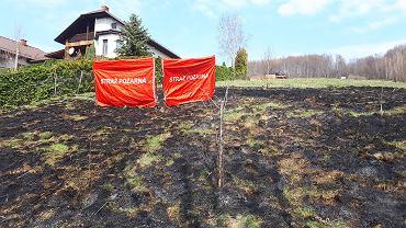 Skutki wypalania traw w miejscowości Międzybrodzie Bialskie