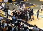 Gigantyczna bójka koszykarek po meczu ligi akademickiej w USA [WIDEO]