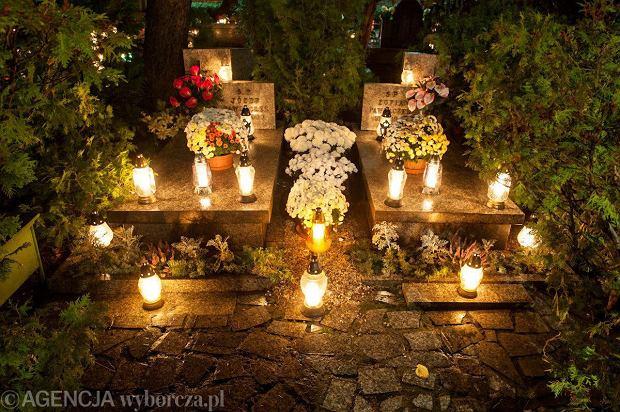 Zdjęcie numer 3 w galerii - Cmentarze najpiękniej wyglądają nocą. Zobacz zdjęcia z wrocławskiej nekropolii