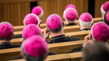 Państwowa komisja ds. pedofilii skierowała do biskupów prośbę o informację