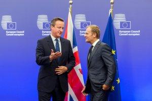 Czy Donald Tusk przekonał Brytyjczyków do Unii?