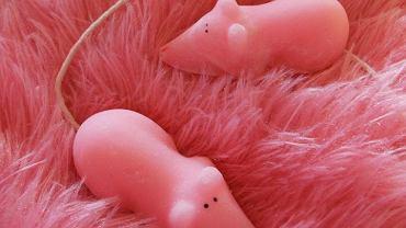 Takich myszek raczej nie zrobisz bez tradycyjnego cukru. Czasem lepiej jednak na nie patrzeć niż zjeść