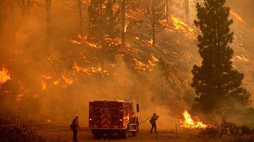 Pożary trafią Rosję, USA i Hiszpanię