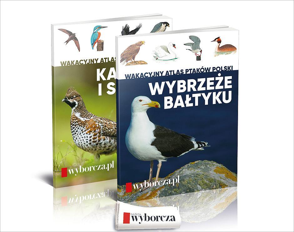 'Wakacyjny atlas ptaków' już poniedziałek, 26 lipca i we wtorek, 27 lipca w 'Wyborczej'.