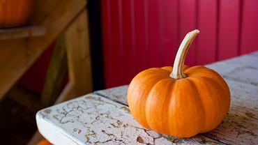 Choć tradycja drążenia dyni na Halloween kojarzy się z krajami anglosaskimi, od kilku lat, święto z dynią w tle, bije rekordy popularności również w Polsce.