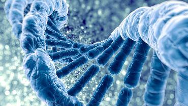Nauka opisała zaledwie 40 przypadków zachorowań na chorobę Kufsa