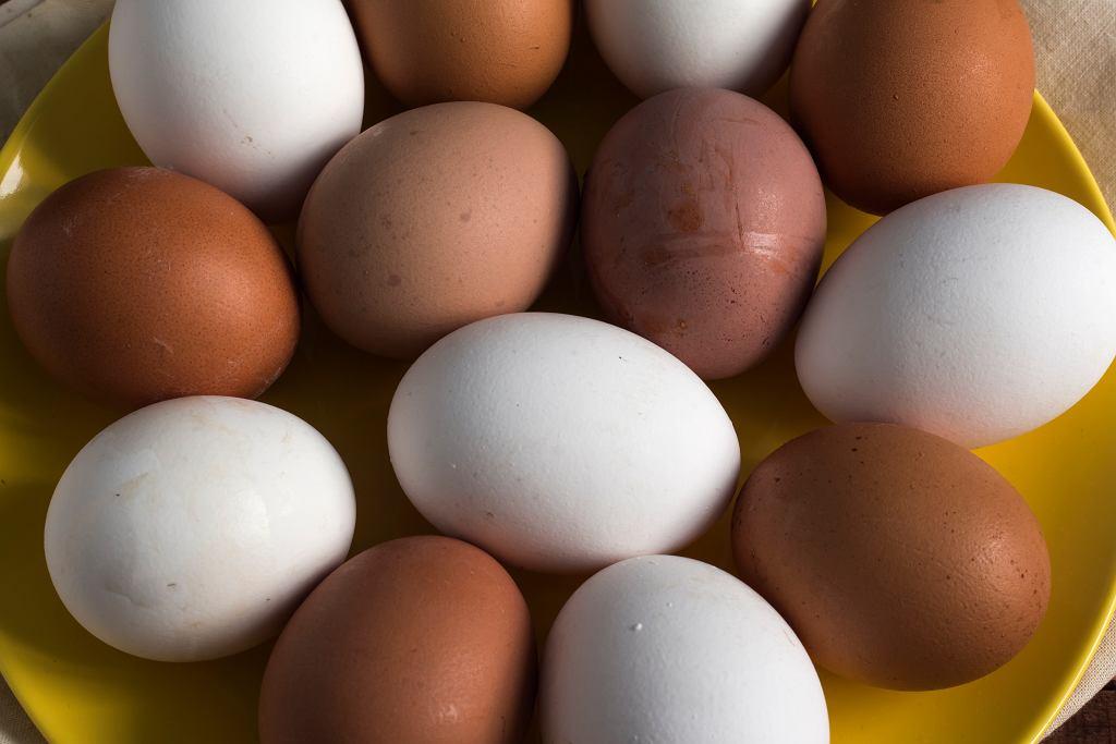 Czy kolor skorupki jajka ma znaczenie?