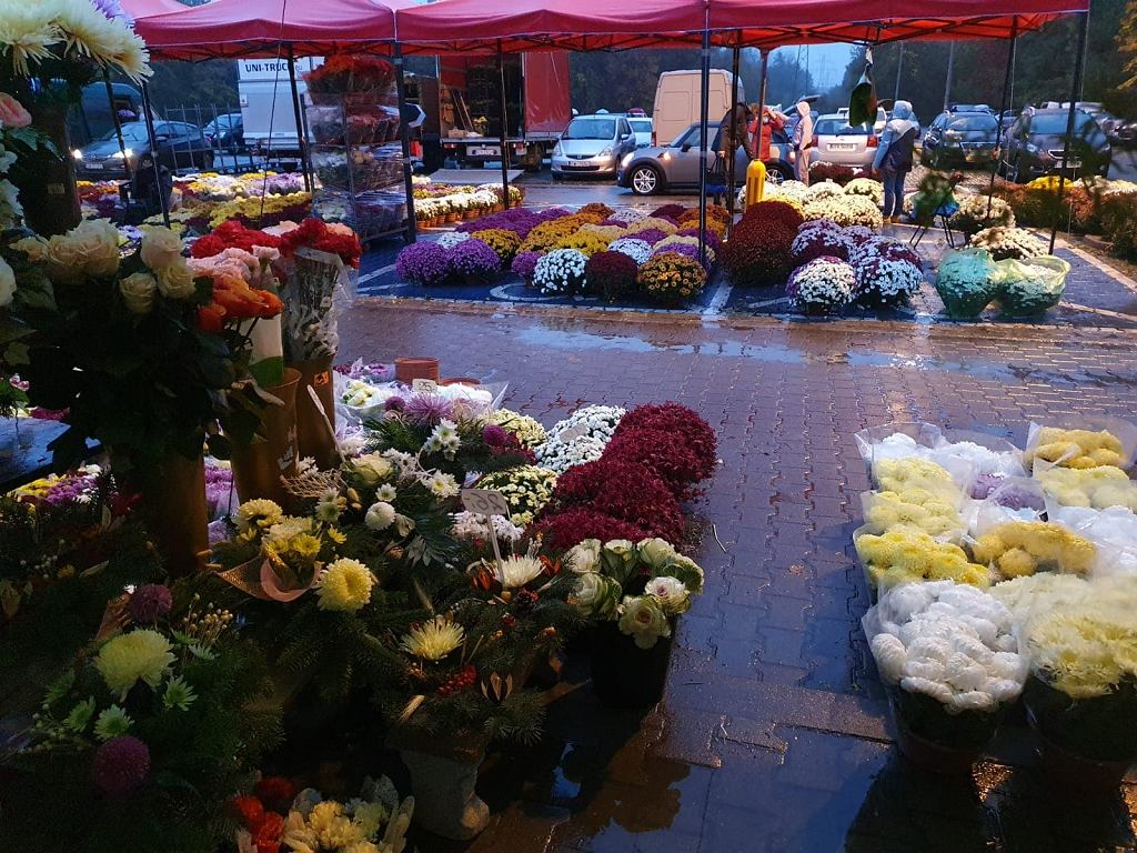 Cmentarze we Wrocławiu we Wszystkich Świętych będą zamknięte. Sprzedawcy martwią się, co z kwiatami i zniczami