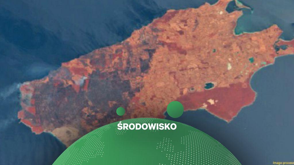Zdjęcie satelitarne Wyspy Kangura w Australii Południowej