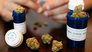 Marihuana medyczna w Los Angeles