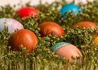 Wielkanoc w czasie pandemii, czyli logistyka w kuchni