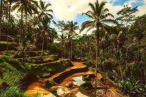 Rajskie wakacje na Bali. Zaplanuj podróż życia