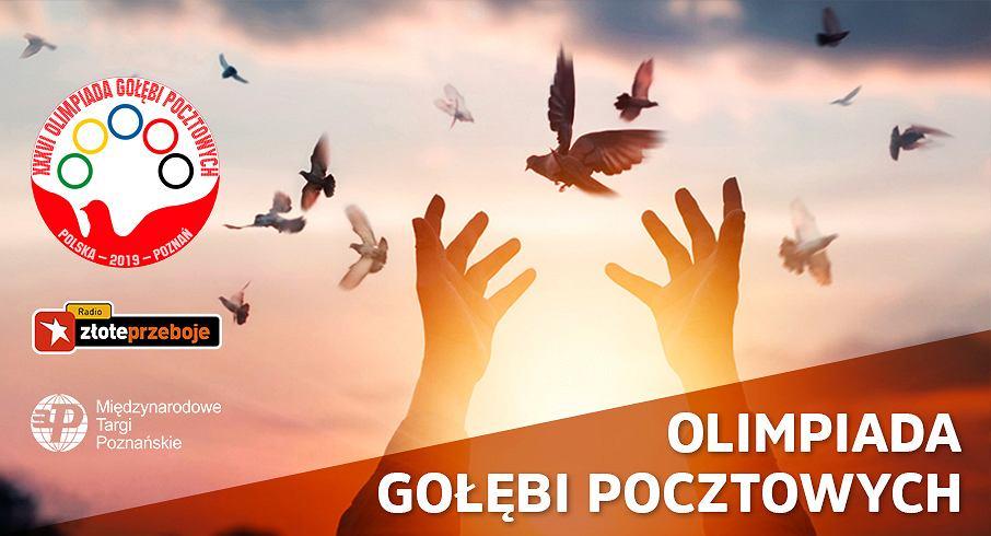 Olimpiada Gołębi