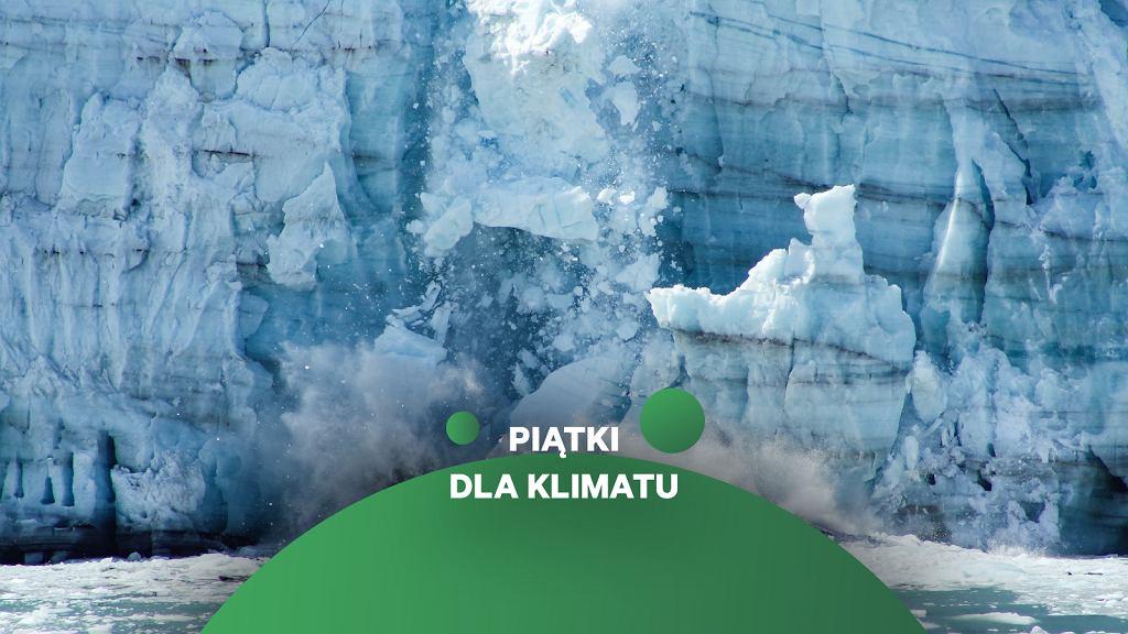 Arktyka. Wraz z ociepleniem klimatu, topnieją lodowce i lądolód arktyczny