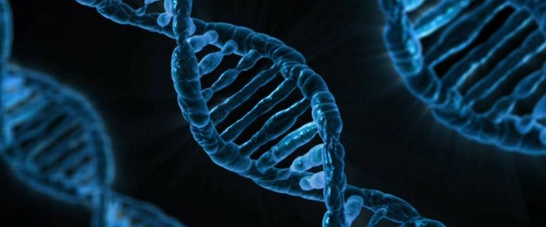 Naukowcy PAN: W dalekowschodnich laboratoriach może być 100 tys. polskich genomów