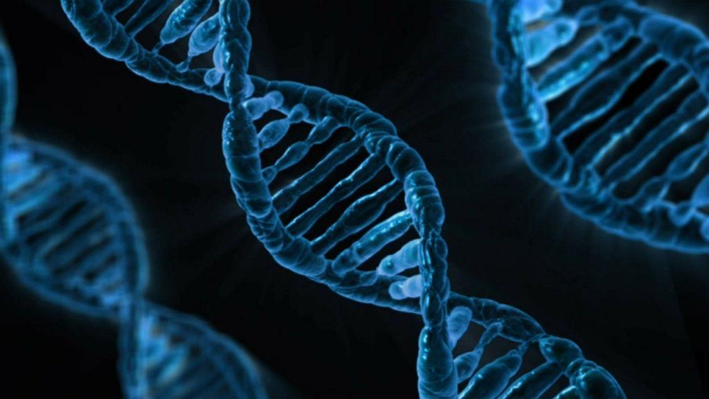 DNA - zdjęcie ilustracyjne