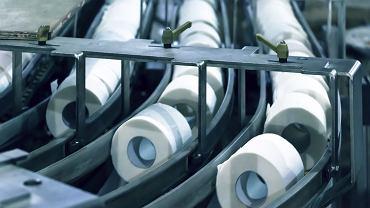 Polska jest potęgą, jeśli chodzi o eksport papieru toaletowego. Około 700 milionów rolek rocznie wysyłamy do Niemiec