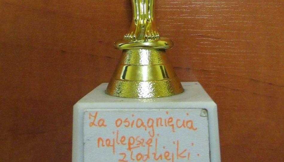 Złodzieje przyznawali sobie 'Oscara' za kradzieże