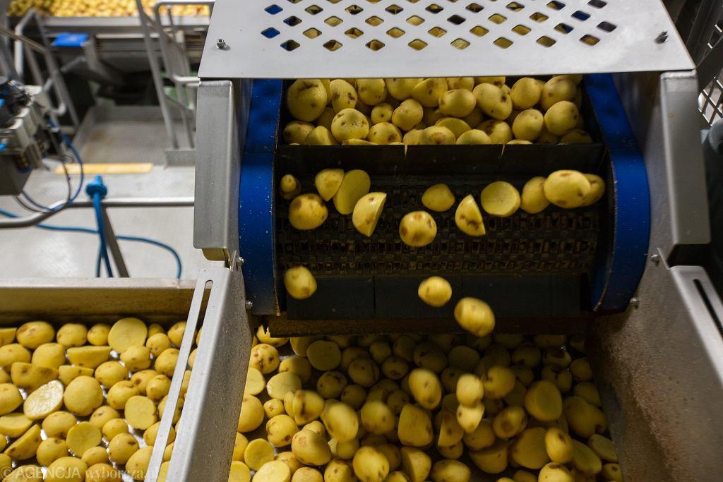 Linia produkcyjna chipsów Lay's