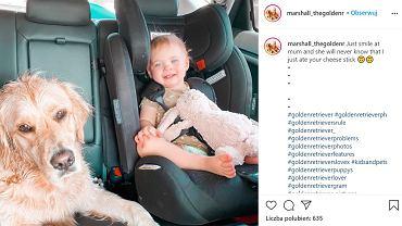 Wyjątkowa przyjaźń hitem internetu. Zdjęcia 2-latki i jej psa robią furorę w sieci. 'Dzięki nim zawsze się uśmiecham'