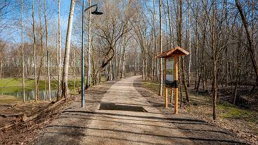 Trwa rewitalizacja Parku Tysiąclecia w Sosnowcu w Milowicach.  Powstały dwie nowe ścieżki edukacyjne. Park w całości powinien być gotowy w czerwcu. Dłuższa, prawie 1,5 km ścieżka, została wybudowana z myślą o młodzieży i dorosłych. Wzdłuż niej zostały ustawione tablice opisujące przyrodę znajdującą się w parku. Krótsza, 500-metrowa droga nazywana 'Ścieżką Leśnych Przeżyć' już służy dzieciom. Wzdłuż niej ustawiono budki dla ptaków, drewniane grzybki oraz tropy zwierząt. Oczy mieszkańców cieszy również zrewitalizowany staw.  - Zadbaliśmy również o oświetlenie, małą architekturę i osoby z niepełnosprawnościami. Z myślą o nich zostały przebudowane schody prowadzące do parku od strony ulicy Baczyńskiego - wyjaśnia Jeremiasz Świerzawski, zastępca prezydenta miasta.