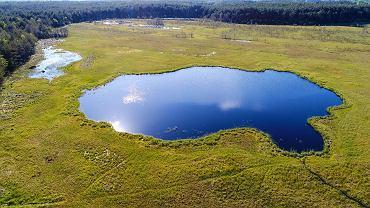 Jezioro Żabiniec koło wsi Jedle (gm. Łopuszno)
