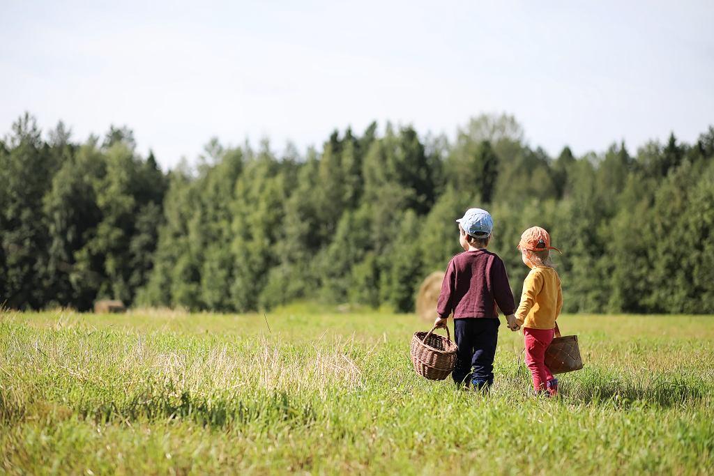 Jak usunąć kleszcza dziecku? Przede wszystkim pamiętajmy o zabezpieczeniu na czas spaceru w miejsca występowania kleszczy. Zdjęcie ilustracyjne, alexkich/shutterstock.com