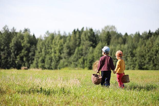 Jak prawidłowo i bezpiecznie wyciągnąć kleszcza dziecku? Sprawdzone porady