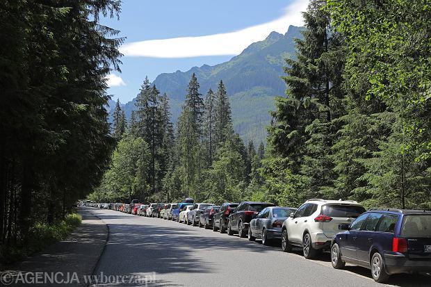 Palenica Bialczanska, 28 lipca 2020 . Setki aut pozostawione na parkingach i prowizorycznych miejscach parkowania przed wejsciem na szlak prowadzacy do Morskiego Oka