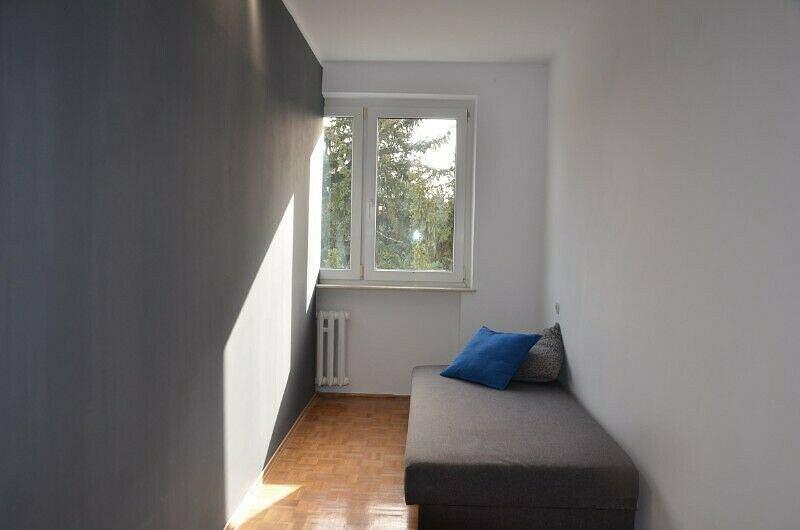 https://bi.im-g.pl/im/1d/06/1a/z27291165IH,Mieszkanie-na-wynajem-z-oknem-podzielonym-sciana-n.jpg